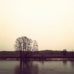 InstagramCapture_ba9d0869-6611-47d3-ab81-da7ffefab33d